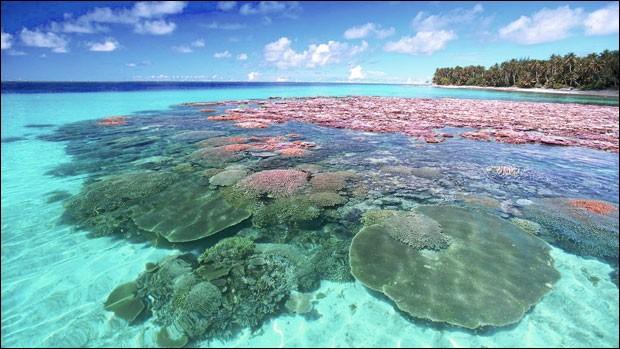 L'atoll de Bikini est situé dans l'océan Indien.