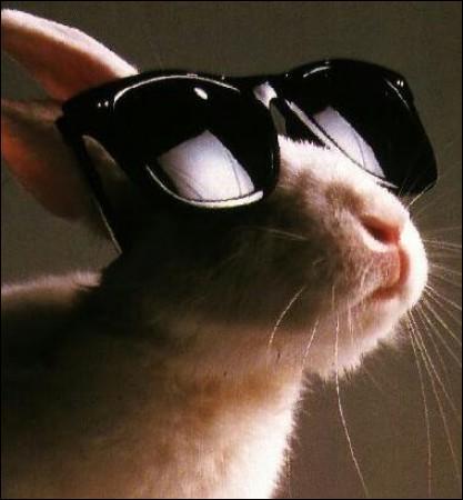 Quinze élèves d'une classe de trente personnes ont des lunettes. Quel pourcentage représente les élèves n'en portant pas?