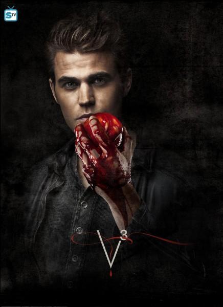 Comment s'appelle la cousine de Stefan Salvatore ?