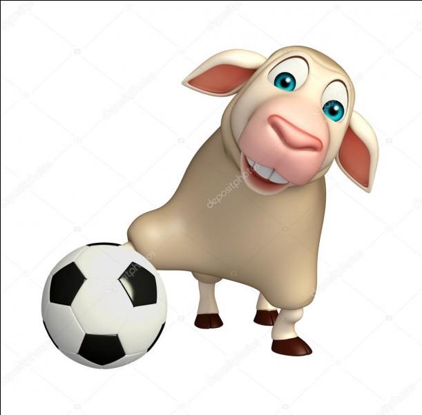 """En italien, """"mouton"""" se traduit par :"""