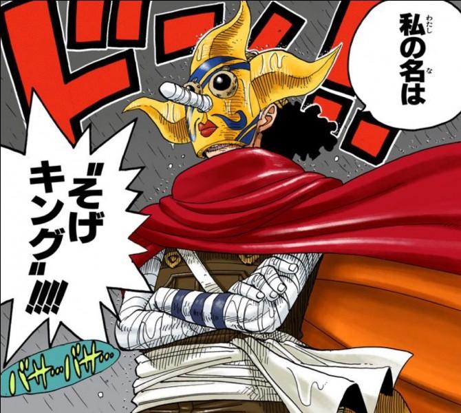 Quand Usopp porte son masque, comment s'appelle-t-il ?