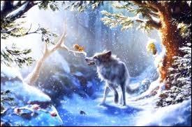 Le loup ou le renard ?