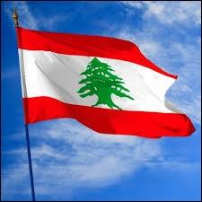 L'arbre sur le drapeau du Liban est un cèdre.