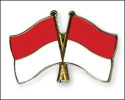 À l'exception de leurs dimensions, les drapeaux de l'Indonésie et de Monaco sont presque identiques.