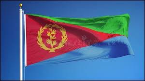 Vous pouvez voir sur le drapeau de l'Érythrée des branches de laurier.