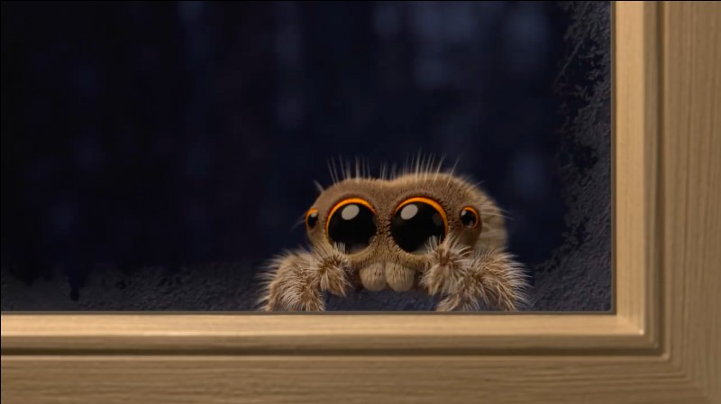 Pourquoi Ron a-t'il peur des araignées ?