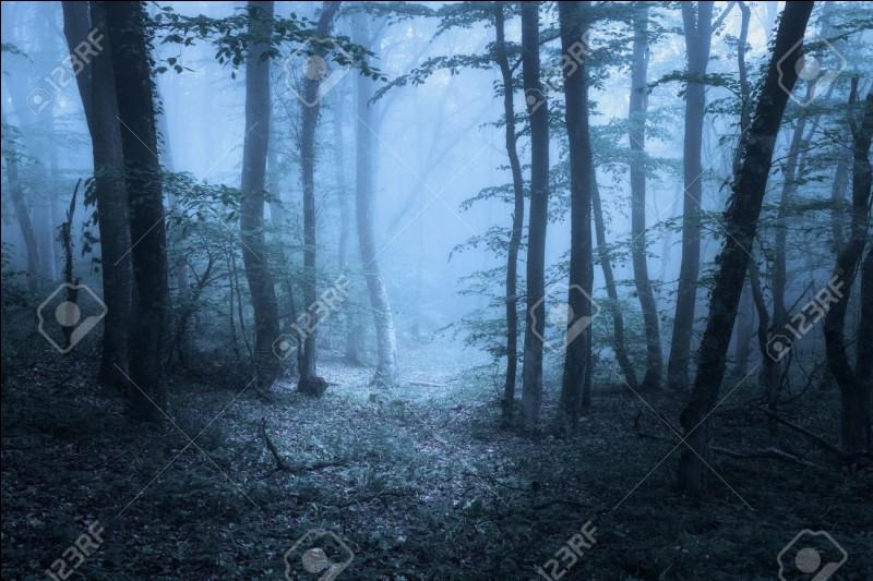 Pourquoi Neville est-il allé en forêt avec Harry et Hermione ?