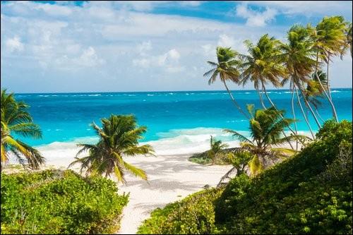 Vous y trouverez une atmosphère britannique particulière dans les Caraïbes. Ses paysages de rêve, ses jardins et ses plages blanches dessinent un décor unique : si vous optez pour sa côte est, vous trouverez l' Atlantique agité et des baies rocailleuses.À l'opposé, la mer est calme et possède plusieurs teintes turquoises et c'est un milieu typique de restaurants hauts de gamme.Nommez cette île :