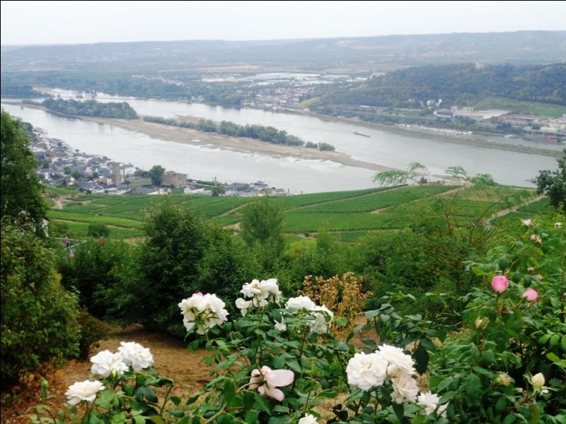 Parmi ces quatre cours d'eau français, lequel est une rivière, et non un fleuve ?