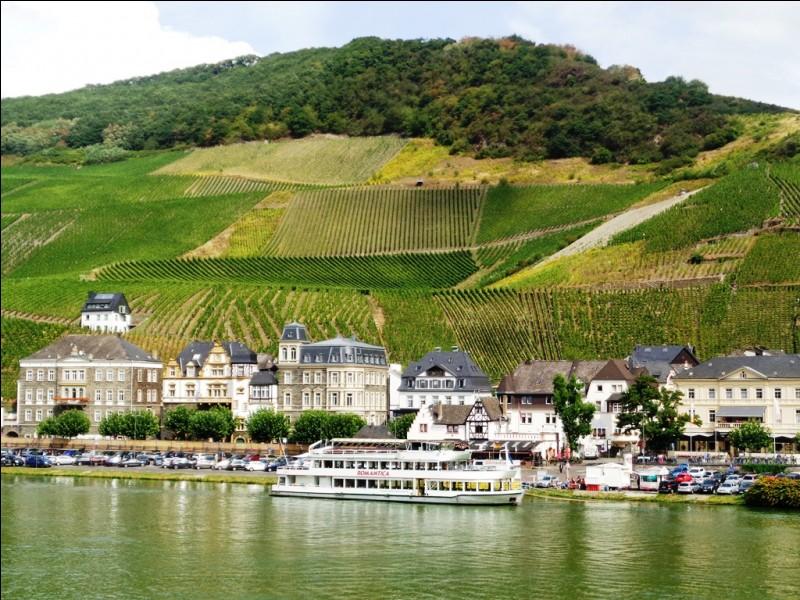 Quelle est cette rivière franco-allemande, célèbre pour sa production viticole, qui se jette dans le Rhin à Coblence ?