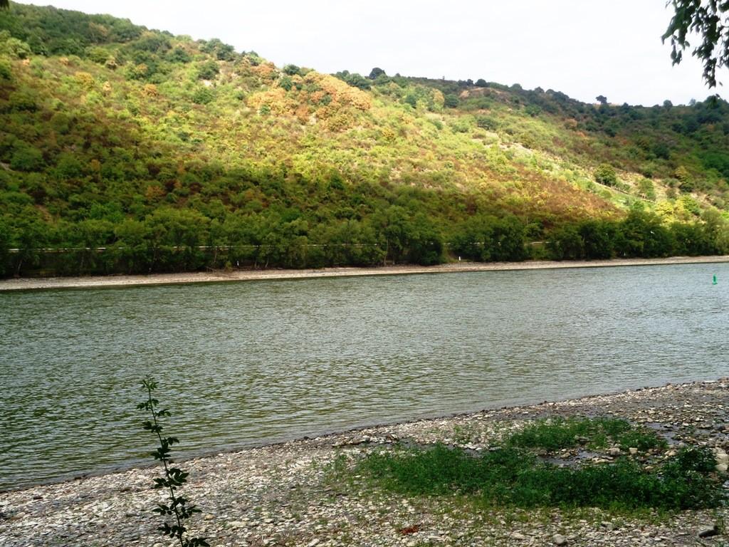 Les rivières en culture générale