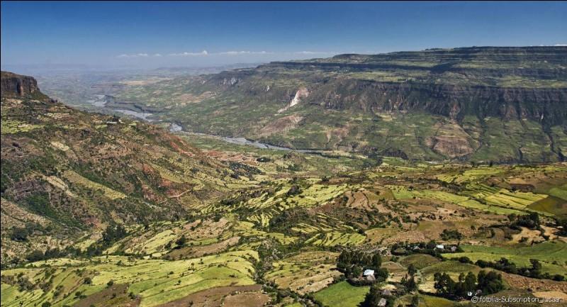 Sur quel continent est située la vallée du grand rift ?
