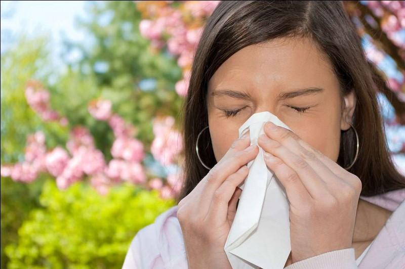 "Qu'est-ce ""Sono allergico"" veut dire ?"