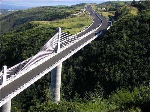 Quelle est la date d'ouverture de l'impressionnante Route des Tamarins ?