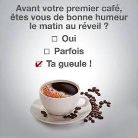 Langue française : Quelle est la bonne orthographe de l'arbuste qui produit le café ?