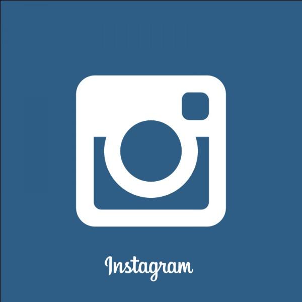 Quel réseau social ne possède pas un logo bleu ?
