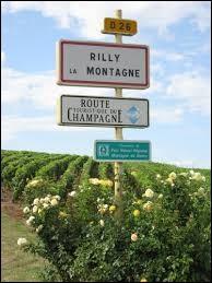 Nous sommes à l'entrée de Rilly-la-Montagne (Marne), village où les habitants portent le gentilé ...