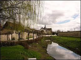 Comment appelle-t-on les habitants de Pont-sur-Seine (Aube) ?
