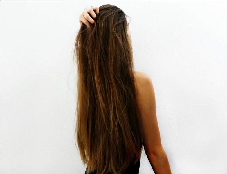 Quelle princesse a les cheveux longs ?