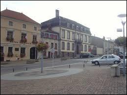 Comment appelle-t-on les habitants de Château-Salins (Moselle) ?