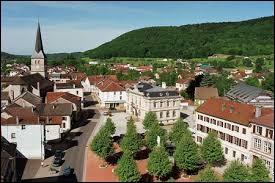 Au Val-d'Ajol (Vosges), ville de l'andouille, les habitants se nomment les ...