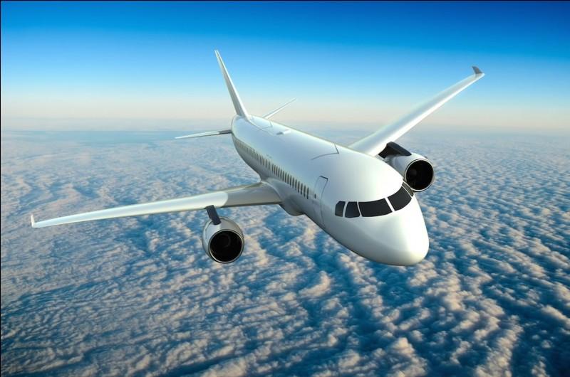 Supportes-tu les longs voyages en avion ?