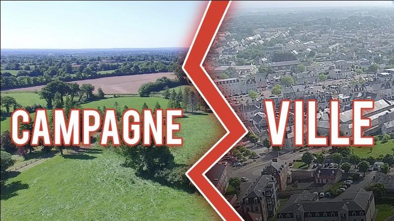 Tu préfères la ville ou la campagne ?