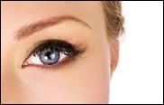 De combien de petits poils, nos sourcils sont-ils environ composés ?