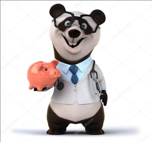 """""""Nounou de pandas"""" est un job de rêve pour qui adore s'occuper des pandas."""