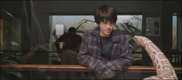 De quelle espèce est le serpent à qui Harry 'parle' ?