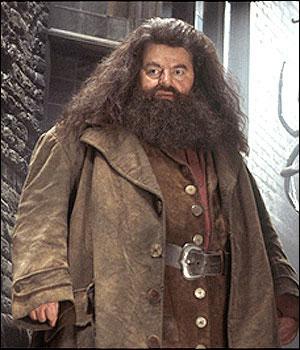 Qu'est-ce qui tient lieu de baguette magique à Hagrid ?