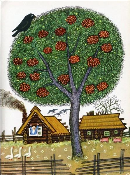 Le mûrier est un arbre :