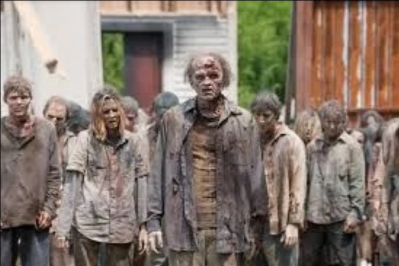 """Comment s'appelle les zombies dans """"The Walking Dead"""" ?"""