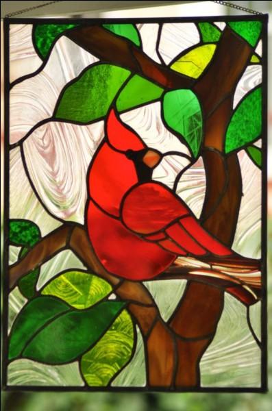 Comment se nomme ce splendide oiseau d'origine malgache ?