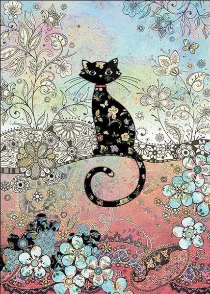 À qui appartient le chat noir nommé Salem ?