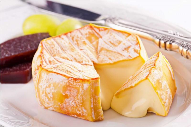 Dans quelle famille de fromages se trouve le Munster ?