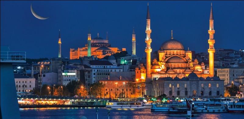 Cette ville est magnifique et l'on y retourne pour ses atouts nombreux. La métropole turque est l'unique ville au monde qui se trouve sur 2 continents, car elle se situe de part et d'autre du Bosphore.Les parties les plus attrayantes de cette ville portuaire se trouvent du côté de la mer de Marmara : soit une vue imprenable depuis le port, on peut y admirer l'emblématique Mosquée bleue.