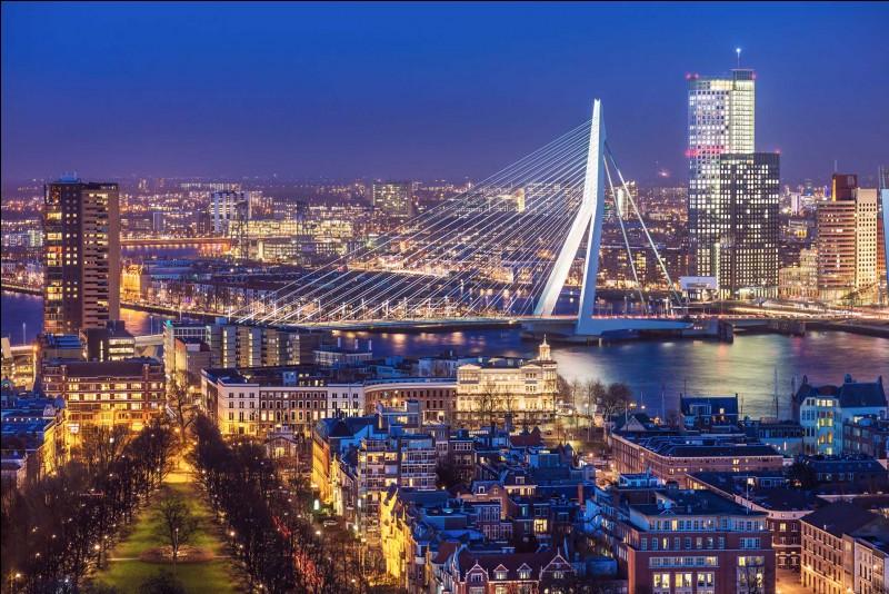 Depuis le temps qu'il occupe la première place portuaire européenne, maintenant il perd de sa superbe face à Anvers. Le port néerlandais est talonné par Anvers sur le volume des marchandises transbordées depuis des conteneurs.La ville devient un laboratoire pour l'architecture contemporaine : en navigant sur la Meuse, vous croiserez un pont dont la forme du pylône évoque le cou d'un cygne.