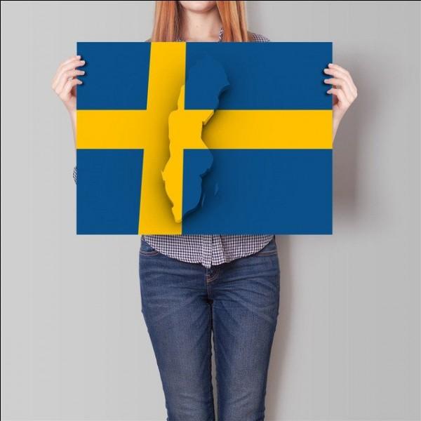 À quoi correspond le drapeau ?
