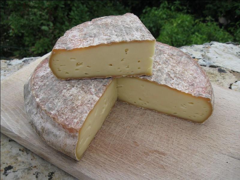 De quelle famille de fromages font partie le Cantal, le Laguiole ou encore le Saint-Nectaire ?