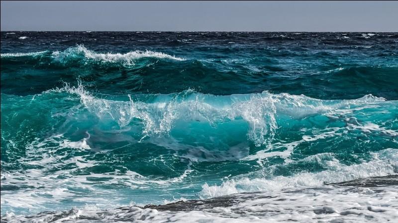 /Géographie/ Quel est le plus grand océan de la planète ?