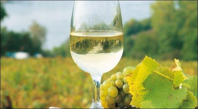 Et voici un excellent vin que l'on fête au mois d'août !