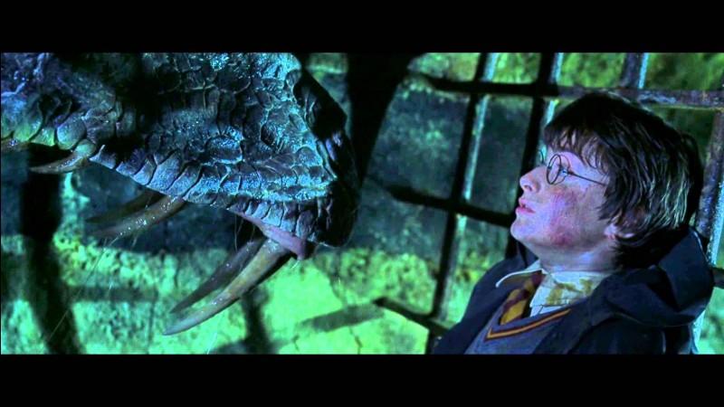 Qui vient sauver Harry Potter du basilic et de Voldemort dans ''Harry Potter et la Chambre des secrets'' ?