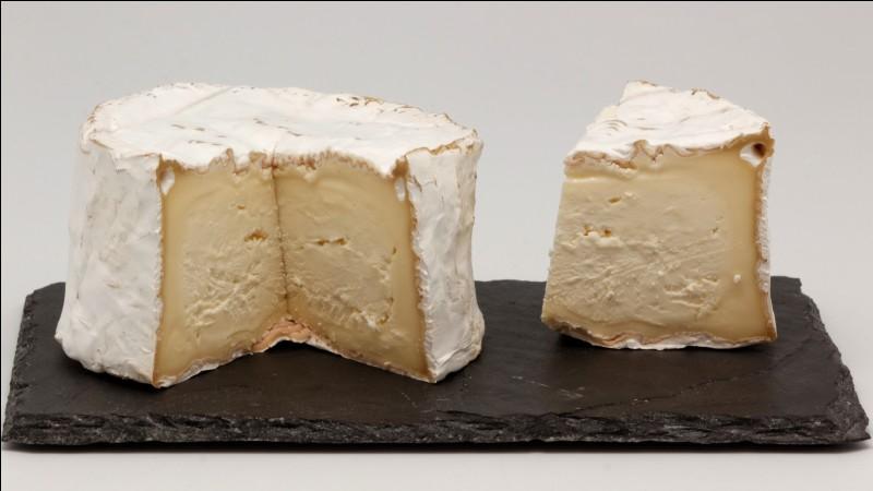 De quelle famille de fromages le Chaource fait-il partie ?