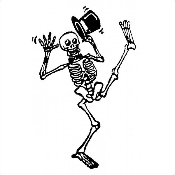 """Quel os du corps humain est également appelé """"scapula"""" ?"""