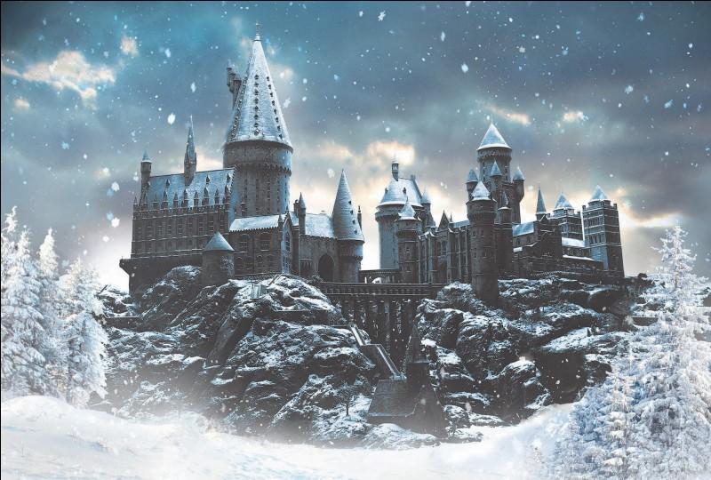 Le chapitre s'ouvre sur une tranche de vie quotidienne à Poudlard, en plein mois de décembre sous la neige. On apprend que Fred et George ont reçu une punition, mais pour quelle raison ?