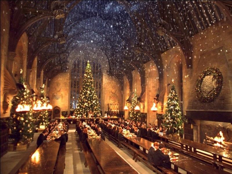 Les vacances de Noël approchent, et les élèves ont la possibilité de rentrer chez eux ou de rester à l'école. Harry reste pour des raisons évidentes, mais pourquoi Ron ne rentre-t-il pas chez lui ?