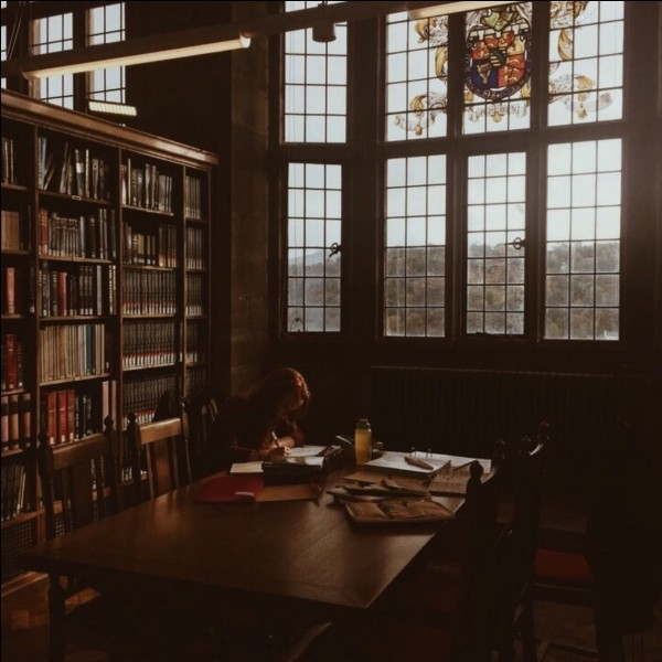 Juste avant les vacances de Noël, Harry, Ron et Hermione passent du temps à la bibliothèque pour trouver des informations sur Nicolas Flamel. Ils fouillent dans beaucoup de livres, mais dans lequel de ces livres ne cherchent-ils pas ?