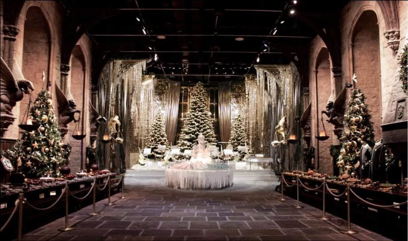 Harry et Ron, qui devaient poursuivre les recherches sur Flamel pendant les vacances, préfèrent jouer aux échecs et manger des marshmallows au coin du feu... Le jour de Noël, Harry reçoit des cadeaux à sa grande surprise. Il reçoit une pièce de monnaie des Dursley, un pull de Mme Weasley, mais que lui offre Hagrid ?