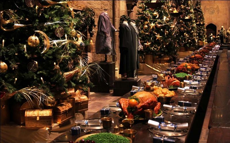 Harry passe la meilleure journée de Noël de sa vie, au détriment de ses recherches sur Nicolas Flamel. Dans cette journée, que n'a-t-il pas fait parmi ces propositions ?